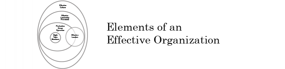 Elements of an Effective Organization